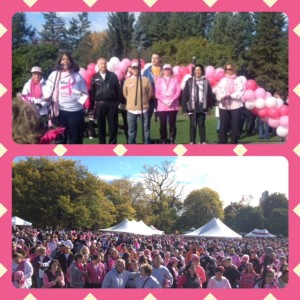 @MakingStridesWalk 2014